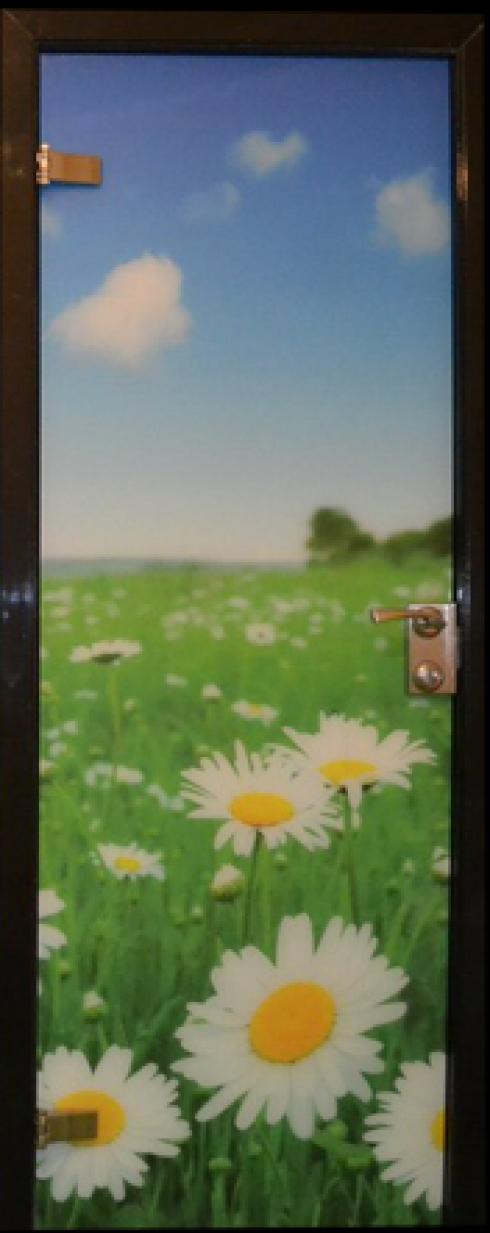 Арк-Самара, Цельностеклянная дверь с фотопечатью