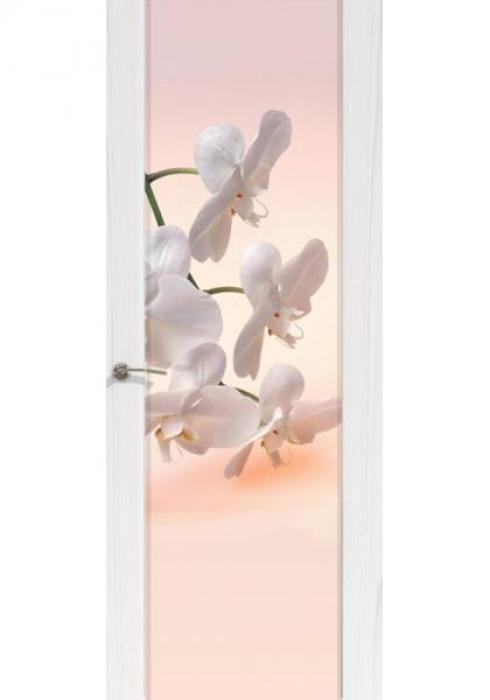 Дверь межкомнатная Шторм 3 Орхидея, Дверь межкомнатная Шторм 3 Орхидея