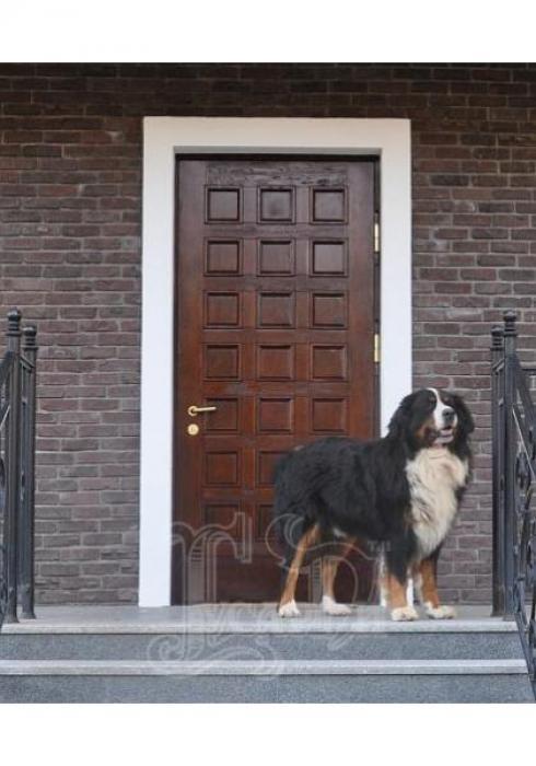 ГусарДи, Дверь входная - парадная 167