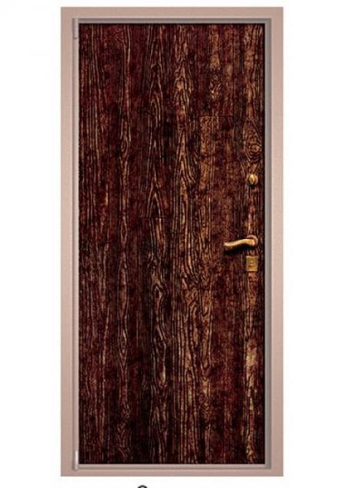 Зверь, Дверь входная Старина 09 Зверь