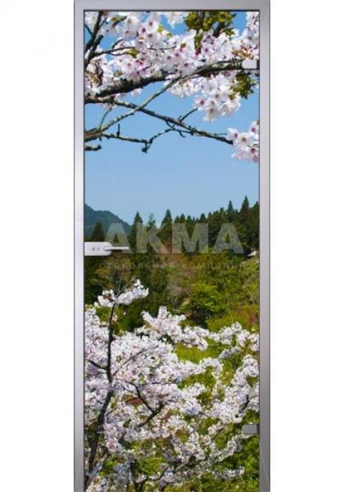 Акма, Межкомнатная дверь  Imagination Flowers