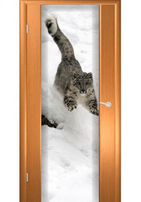 Асток, Межкомнатная дверь ДФ 003