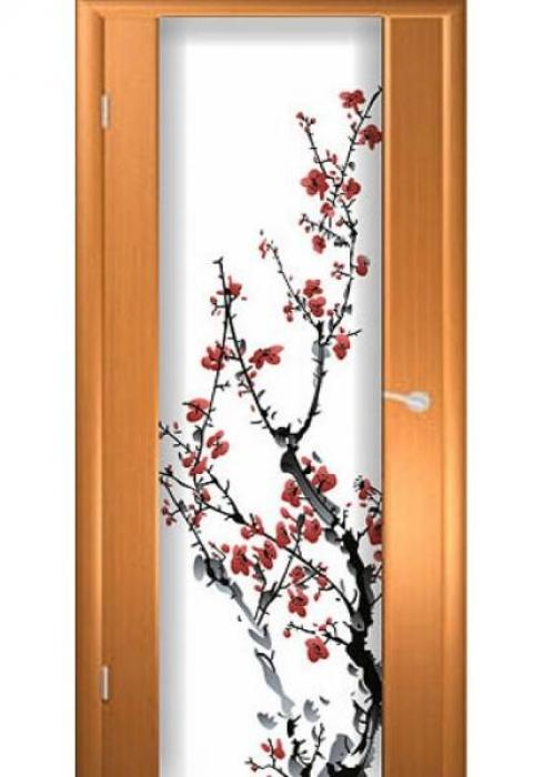 Асток, Межкомнатная дверь с рисунком ДФ 006