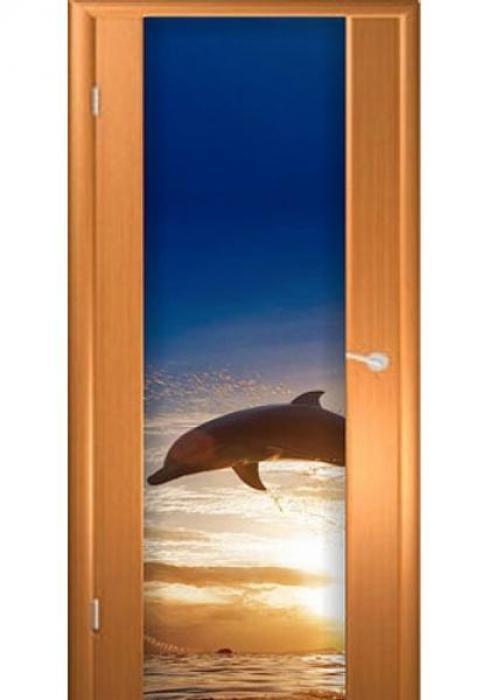 Асток, Межкомнатная дверь с рисунком ДФ 008