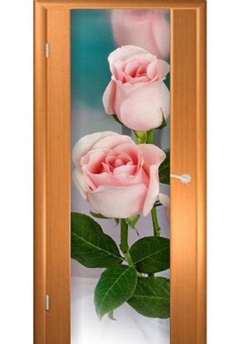 Асток, Межкомнатная дверь с рисунком ДФ 009