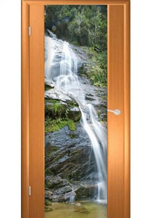 Асток, Межкомнатная дверь с рисунком ДФ 012