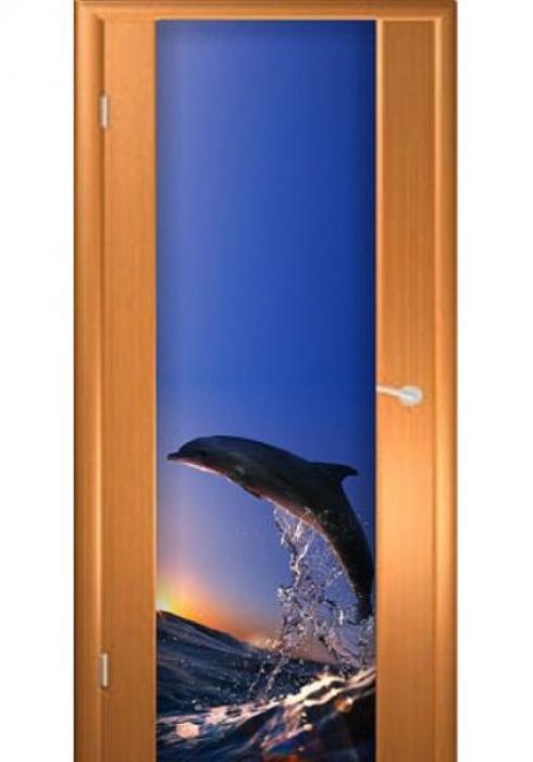 Асток, Межкомнатная дверь с рисунком ДФ 013