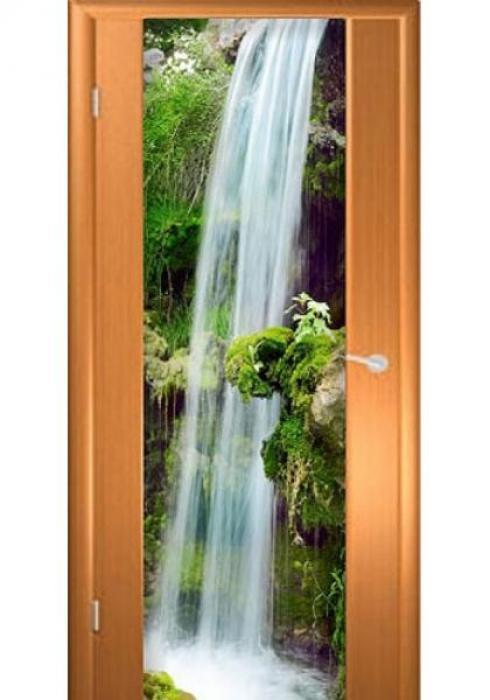 Асток, Межкомнатная дверь с рисунком ДФ 014