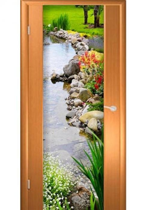 Асток, Межкомнатная дверь с рисунком ДФ 016