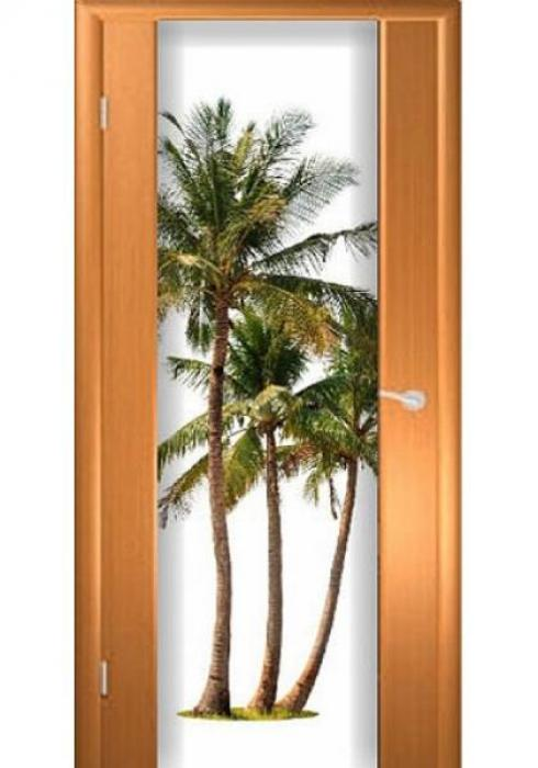Асток, Межкомнатная дверь с рисунком ДФ 017