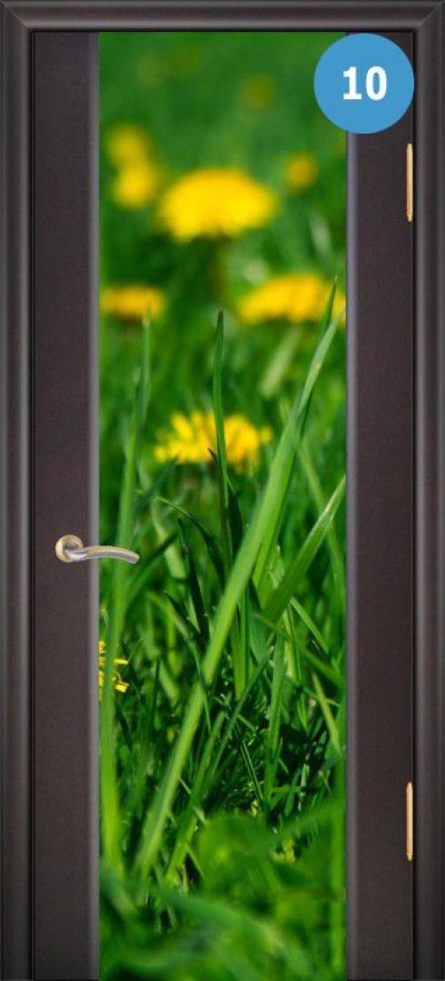 Арк-Самара, Межкомнатная дверь Танго 3, фото № 10