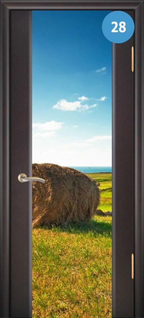 Арк-Самара, Межкомнатная дверь Танго 3, фото № 28