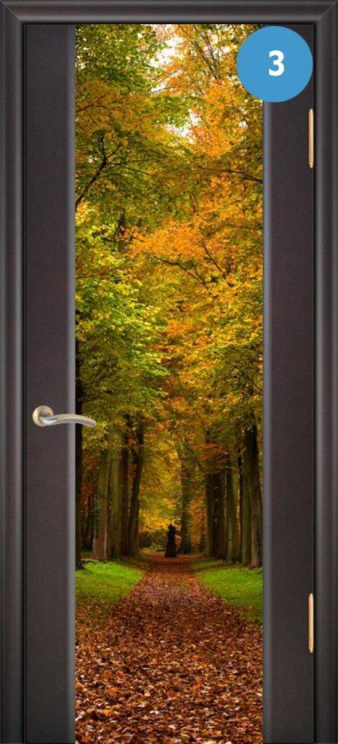 Арк-Самара, Межкомнатная дверь Танго 3, фото № 3
