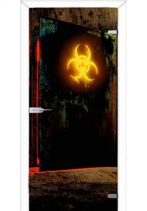 Асток, Межкомнатная стеклянная дверь с фотопечатью СДФ 003