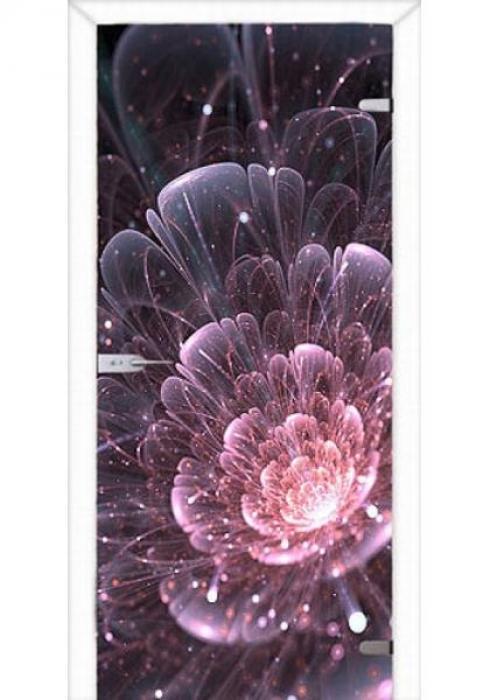 Асток, Межкомнатная стеклянная дверь с фотопечатью СДФ 029