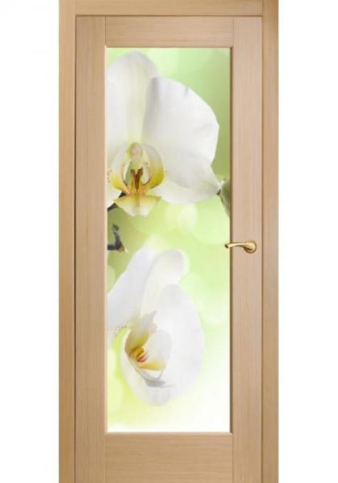 Оникс, Межкомнатные двери фотопечать Орхидеи белые