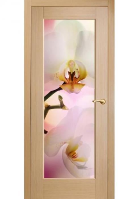 Оникс, Межкомнатные двери фотопечать Орхидеи розовые