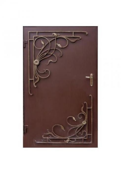 Вландр, Входная стальная дверь с ковкой
